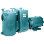 Commercial Pool Pumps>