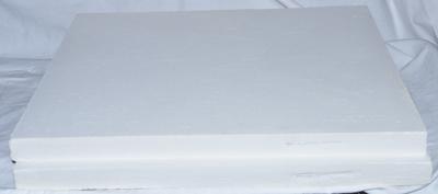 Raypak model 405 Refractory Uncommon (Front & Rear)